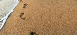 02252015-leave-footprints-that-inspire-csli